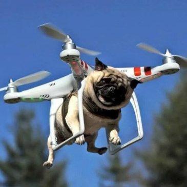 Uso de Drones. Como evitar sanciones.